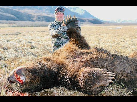 10 1/2FT Coastal Brown Bear hunt… MASSIVE BEAR!