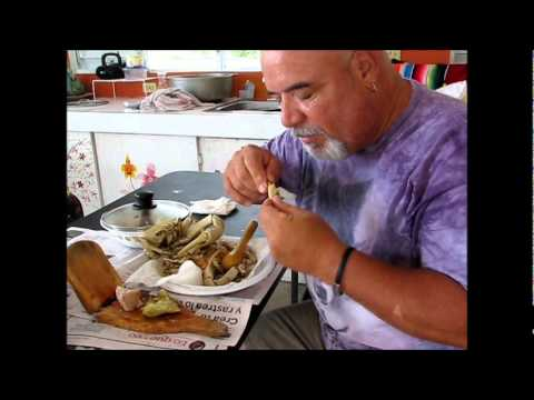 Landcrab Eating.wmv