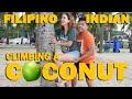 CLIMBING A COCONUT TREE | FILIPINO-INDIAN