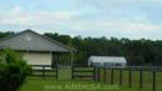 Florida Horse Farm For Sale