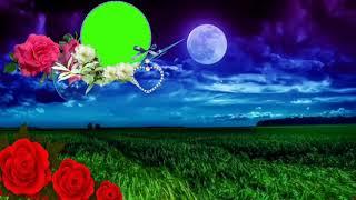 Wedding green screen effect background | shaadi background effect. #💖