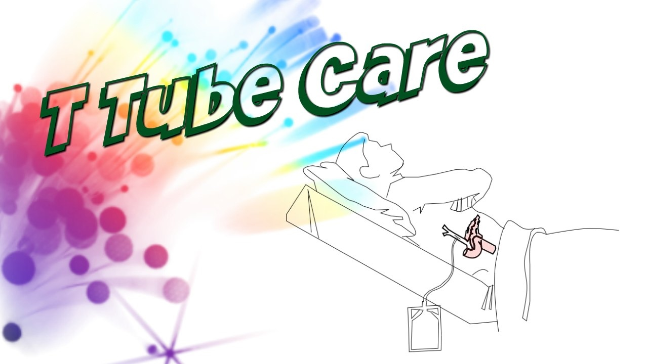 Download What is TTube?