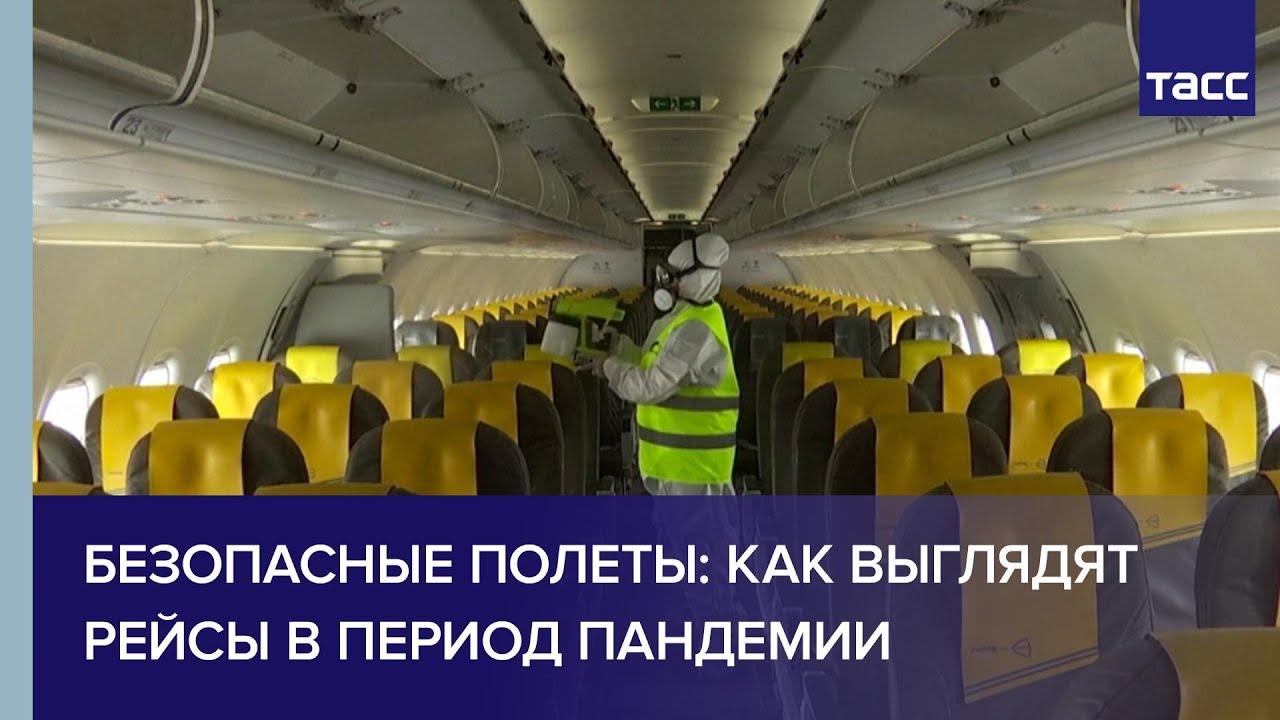 Безопасные полеты: как выглядят рейсы в период пандемии