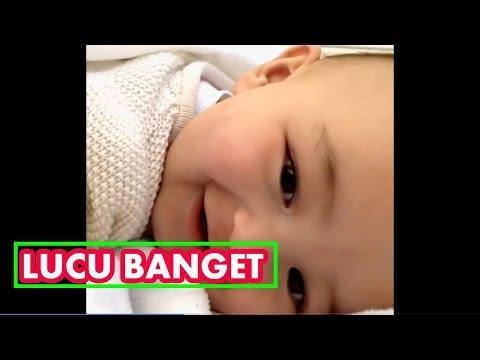 Bayi Lucu Banget Bikin Ngakak