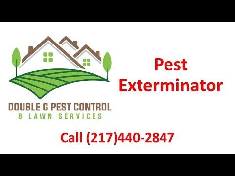 Pest Exterminator Quincy Illinois