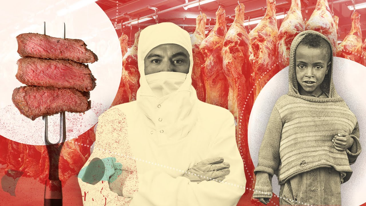 Meat As A Human Rights Issue - The Truth