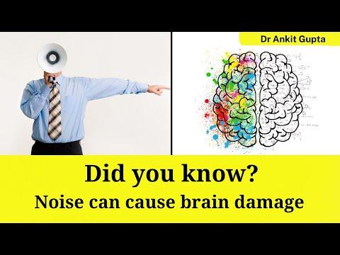How Sound Affects our Brain | Patient Education | MICKaynak: YouTube · Süre: 6 dakika34 saniye