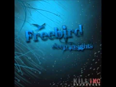 Freebird - Deep Insights