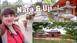 JR-Pass Day 4: NARA & UJI | JAPAN | JVlog thumbnail