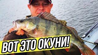 ЛОВЛЯ КРУПНОГО ОКУНЯ на джиг и воблеры Рыбалка на окуня Kamfish