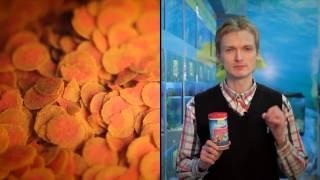 TetraPro Colour(Высококачественный корм для любых видов тропических рыб. Инновационная форма чипсов для минимального..., 2015-03-14T08:44:52.000Z)
