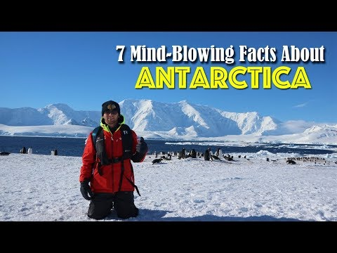 7 Mind-Blowing Facts About ANTARCTICA