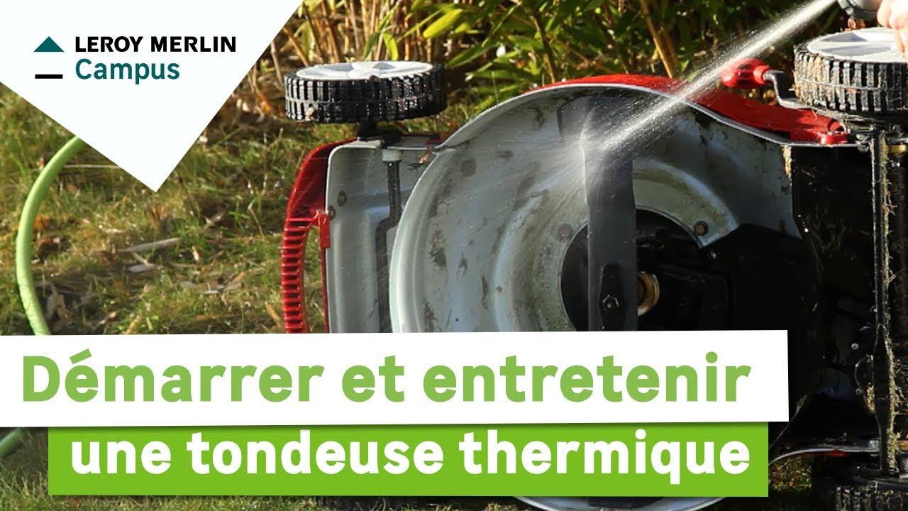 Leroy Merlin Sterwins Elagueuse Sur Perche Thermique