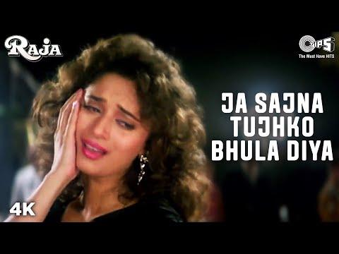 Jaa Sajna Tujhko Bhula - Video Song | Raja | Madhuri Dixit & Sanjay Kapoor | Alka Y & Udit N