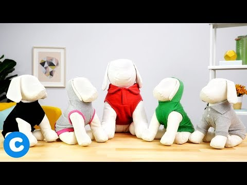 Frisco Dog Apparel | Chewy