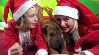 AUGURI E CANZONE DI BUON NATALE - Santa Claus Is Coming To Town Canzoni per Bambini - Canale Nikita