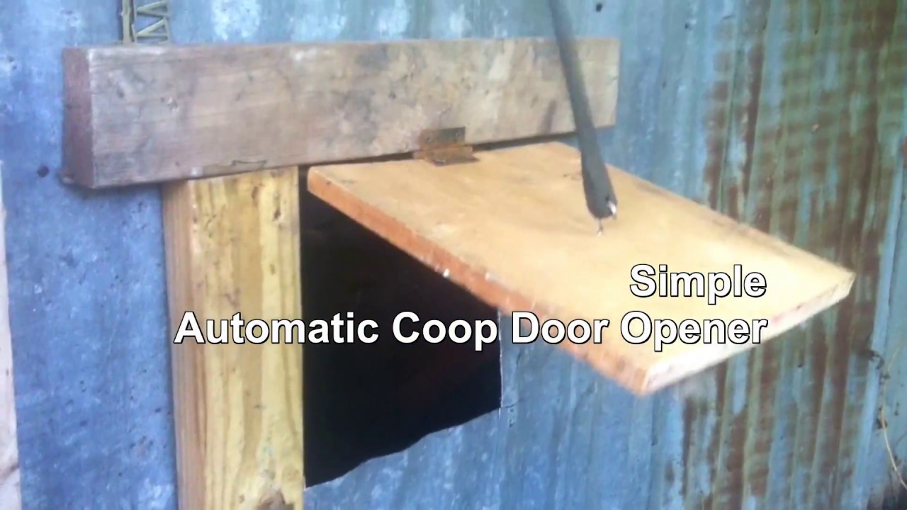 easy diy morning automatic chicken coop door opener made from junk [ 1280 x 720 Pixel ]