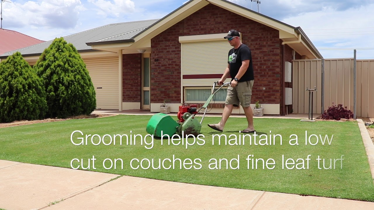 PROGRAMS & TIPS | lawnpornonline
