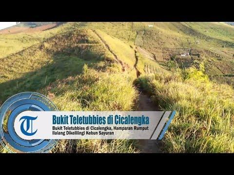 bukit-teletubbies-di-cicalengka,-kabupaten-bandung