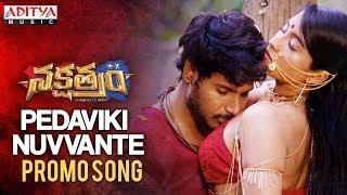 Telugutimes.net Pedaviki Nuvvante Promo Song