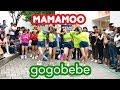 K-POP IN PUBLIC, BUSKINGBOOMBERRYMAMAMOO마마무 - gogobebe고고베베 dance cover