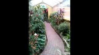 Recorrido tropicario -  Jardín botánico Bogota