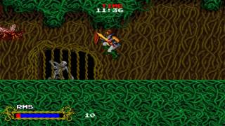 [HD] Cadash Chapter 3 Forest Maze 1989 Taito Mame Retro Arcade Games