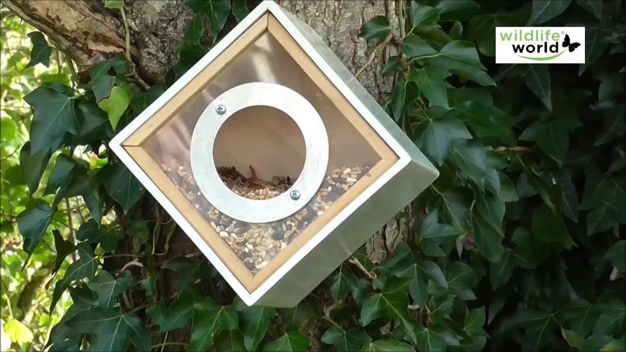 oiseaux du jardin mangeoire design pour oiseaux jardinerie truffaut tv youtube. Black Bedroom Furniture Sets. Home Design Ideas