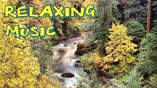�������� ���� Релаксация музыка - индийская, медитация, море, чтобы узнать, мечтать, немые, ������