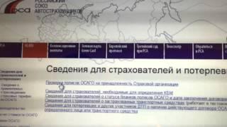 видео Проверка полиса ОСАГО на подлинность бесплатно