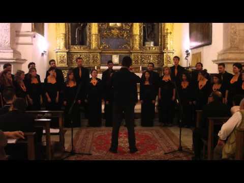 Vox Viva - Adoramus te Christe - C. Monteverdi