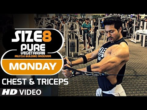 SIZE-8 |  MONDAY - Chest & Triceps | Pure Vegetarian Muscle Building Program by Guru Mann