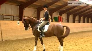 Dressage Exercise - Walk Pirouettes