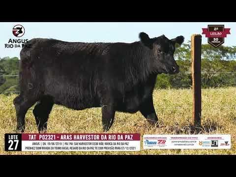 LOTE 27   PO2321 ARAS HAVESTOR  DA RIO DA PAZ - Prod. Agência e TV El Campo
