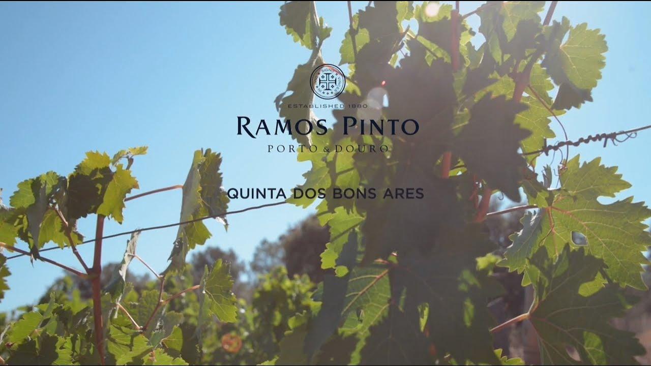 Ramos Pinto - Quinta dos Bons Ares - YouTube