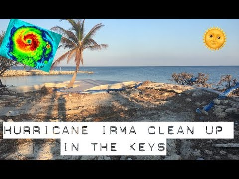 cleaning up the Florida Keys after Hurricane Irma | tarte talk