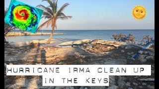 cleaning up the Florida Keys after Hurricane Irma | tarte talk