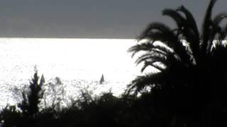 Жизнь в Испании. 25 января 2015 Юные яхтсмены в море