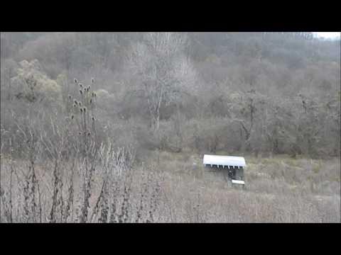 Участок в лесу для базы отдыха в станице Азовская Северский район Краснодарский край