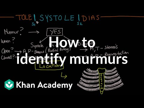 How to identify murmurs  Circulatory System and Disease  NCLEXRN  Khan Academy
