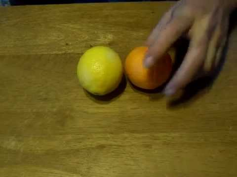 Growing orange & lemon trees from seed