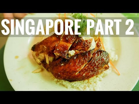 SINGAPORE // Part 2 // Chicken Rice, China Town, Little India, & the Botanic Gardens