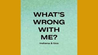 Capítulo 3: WHAT'S WRONG WITH ME | Álbum: Indiana & Tico | A HISTÓRIA POR DETRÁS DA MÚSICA ✨