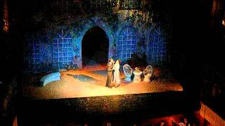 The Sound of Music- Cluj Opera- An Ordinary Couple