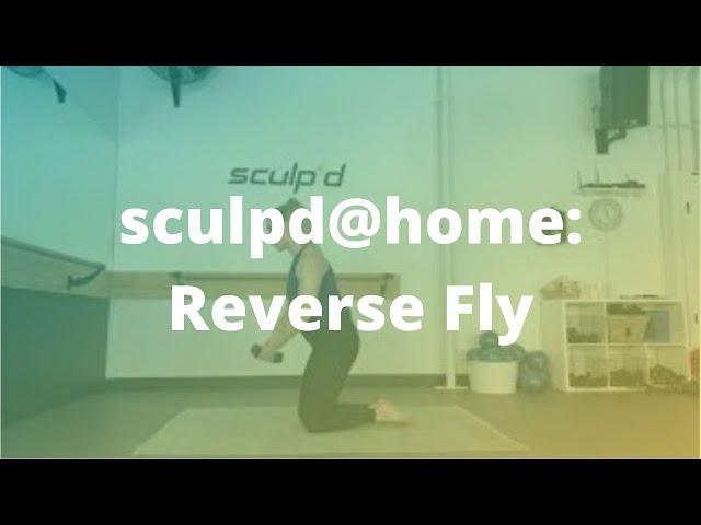 sculpd@home: Reverse Fly