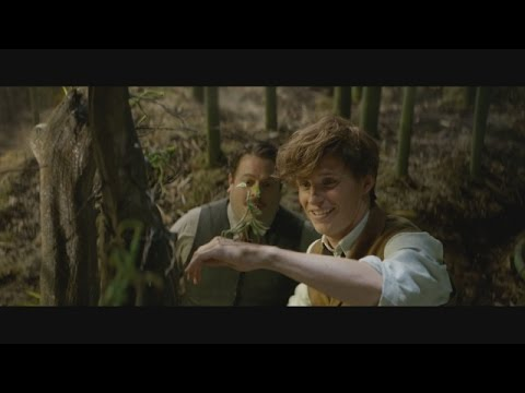 First Look! 'Fantastic Beasts and Where to Find Them' Full Trailer