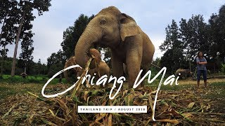 CHIANG MAI - Thailand Tour 2018 |  GoPro HERO 5 black | Travel video