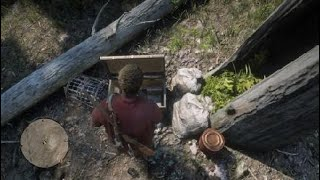 TOP 5 HIDDEN TREASURE CHEST LOCATION IN RED DEAD REDEMPTION 2, +20 GOLD BARS ETC