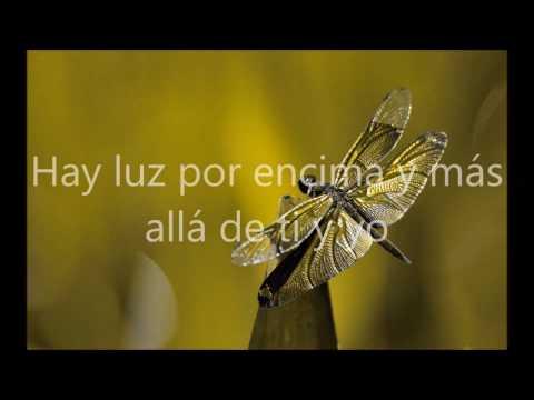 Dragonfly-Smile DK Sub Español