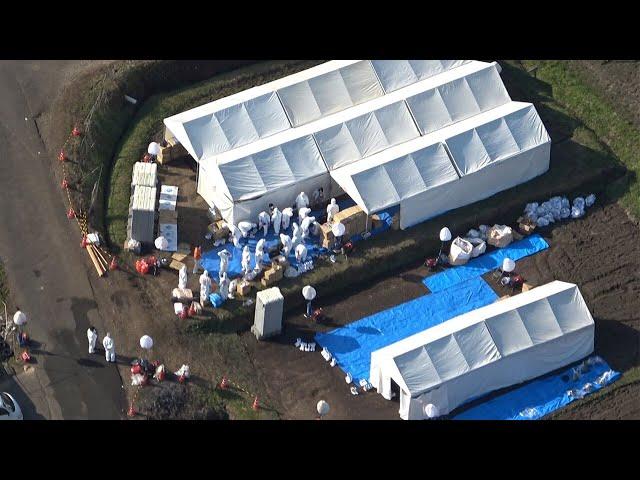 宮崎で鳥インフル ニワトリ630万羽超が出荷できず